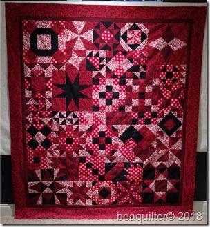 """8"""" qube QAL beaquilter final quilt red black"""
