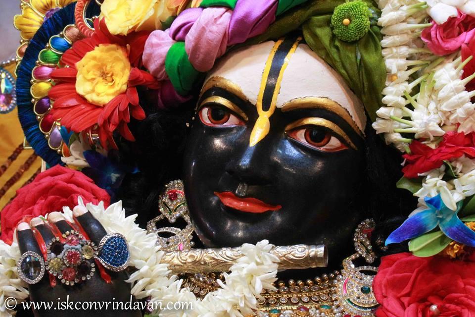 ISKCON Vrindavan Shringar Deity Darshan 11 May  2016 (2)