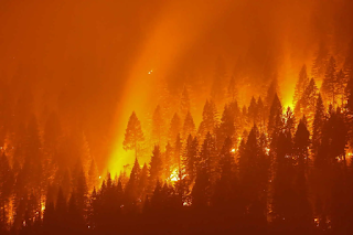 Dixie fire in Northern California, July-August 2021.