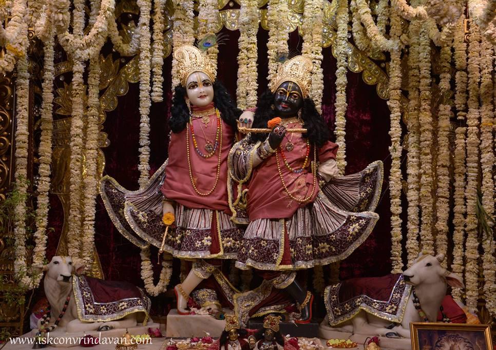 ISKCON Vrindavan Mangal Deity Darshan 28 Feb 2016  (3)