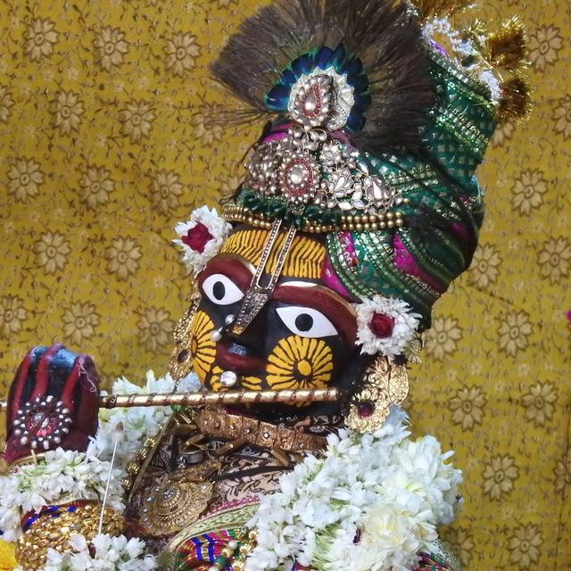 Radha Govind Devji Deity Darshan 02 Mar 2016 (7)