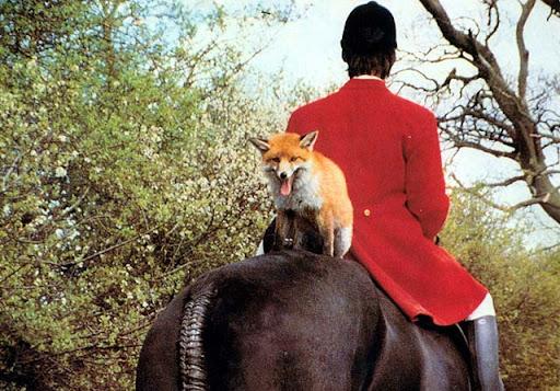English Hunting