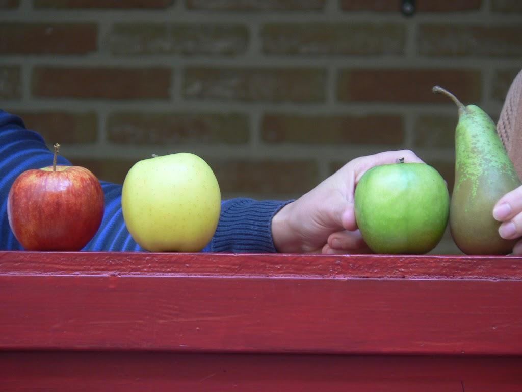 De Kleuters maken zelf een fruit- en groentewinkel. - P1260564.JPG