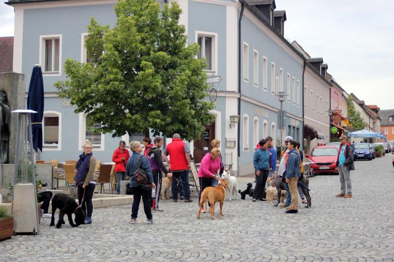 On Tour in Waldsassen: 14. Juli 2015 - Waldsassen%2B%25289%2529.jpg