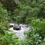 Le Rio en amont de Las Juntas, 1500 m (Carchi, Équateur), 4 décembre 2013. Photo : J.-M. Gayman