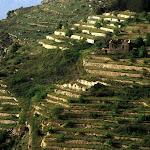 Jezzine (Liban)