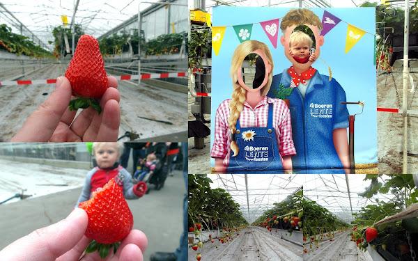 Boeren Lentefeesten Albert Heijn Mamablog Mamablogger Uitje Uitstapje Pasen Tweede Paasdag Aardbeien Teler