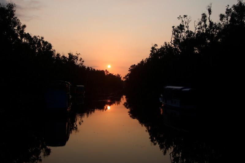 Amanecer en la jungla de Borneo