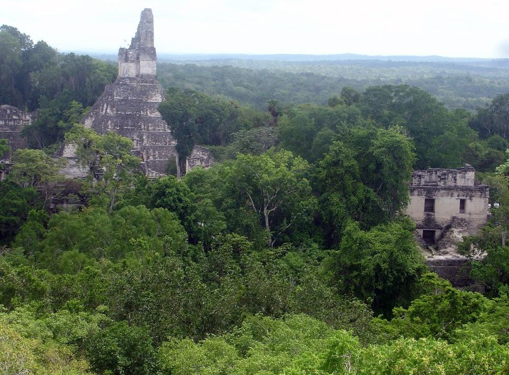 The Tikal ruins, the most famous of Guatemala's many Mayan ruins...