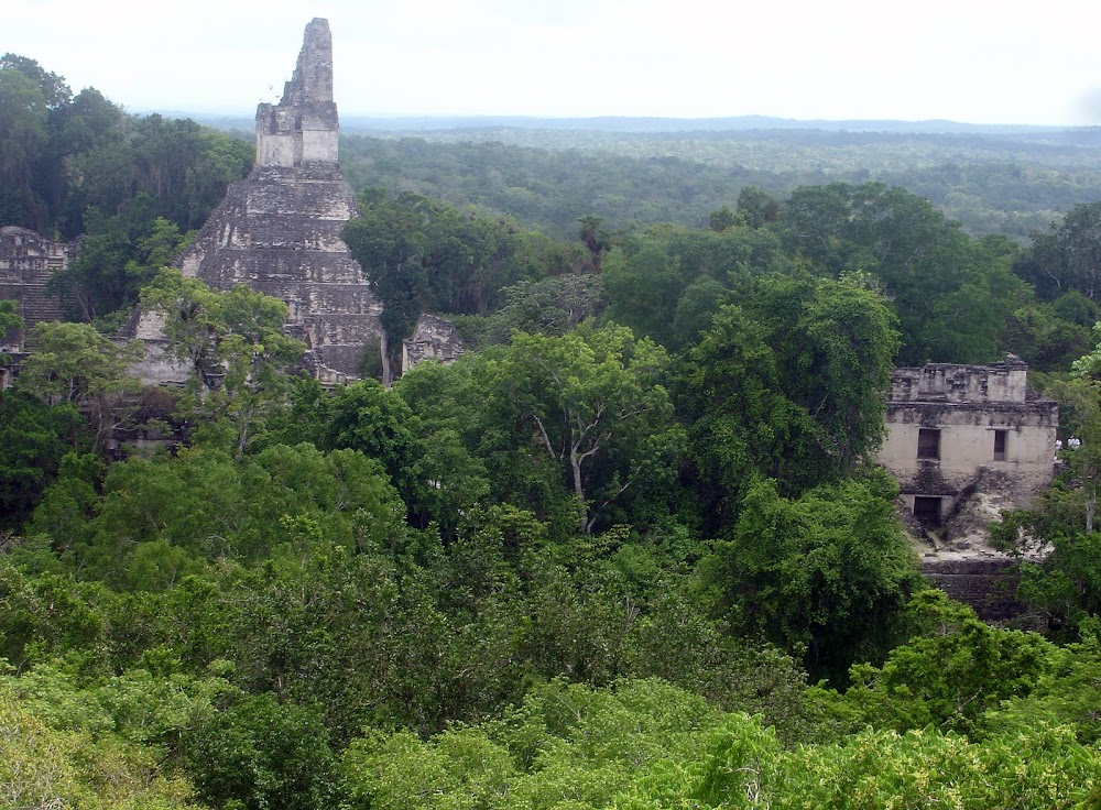 The Tikal ruins, the most famous of Guatemala's many Mayan ruins...