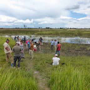 Okavango Delta (Mobile camp van Island Safari)