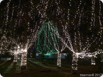 Lights at the lake 4