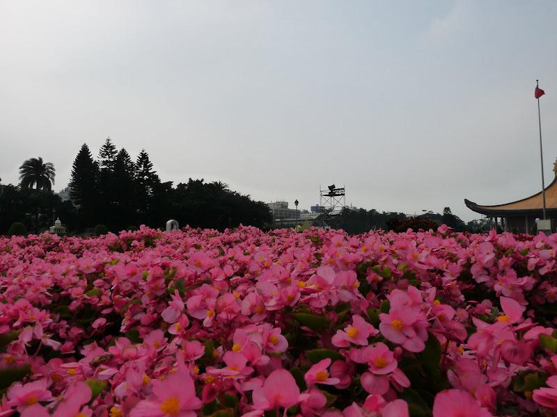 Taiwan .Taipei Lantern Festival - P1150748.JPG