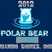 2012 Polar Bear Plunge