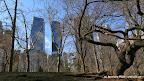Central Park + Skyline of New York