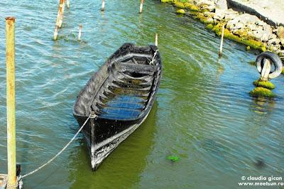 barci cu vasle: lotca