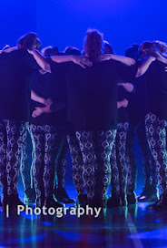 Han Balk Voorster Dansdag 2016-4380-2.jpg