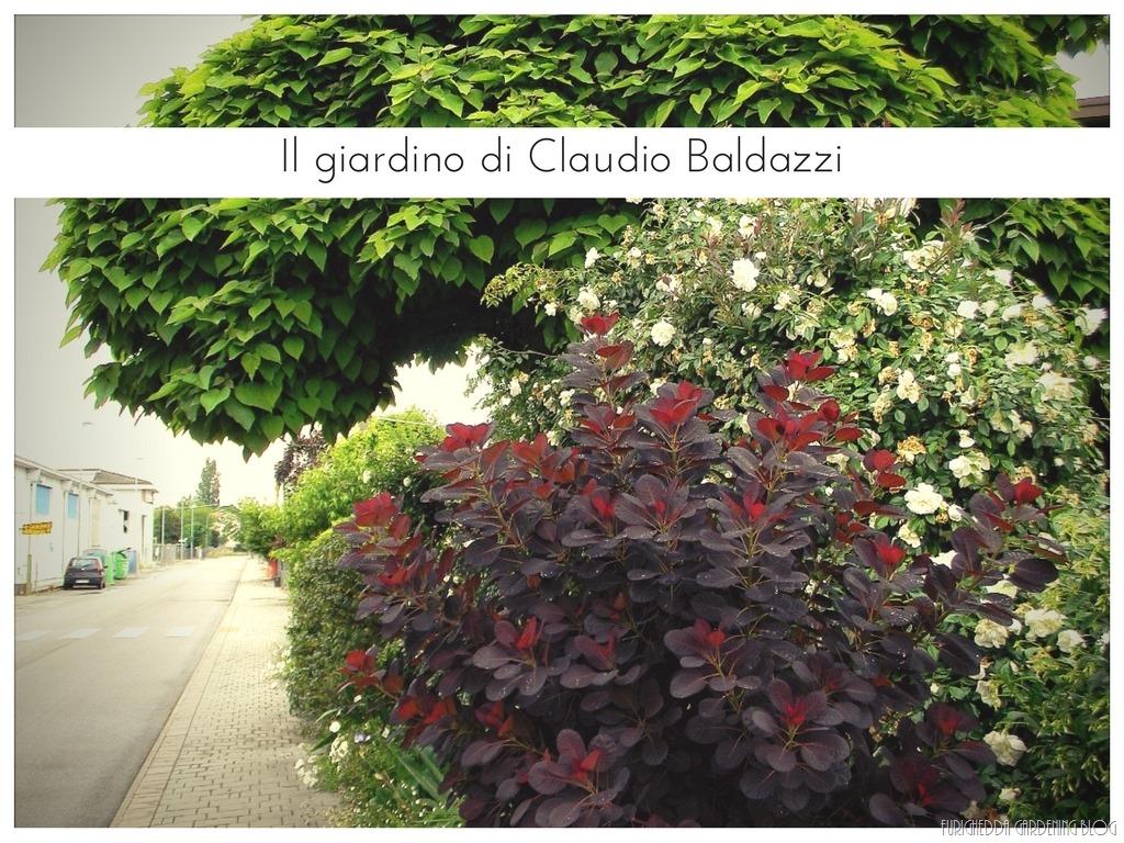 [Il+giardino+di+Claudio+%284%29%5B9%5D]