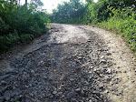 Jalan Rusak Di Desa Loji Kec. Simpenan Membutuhkan Perhatian Pemda Untuk Perbaikan