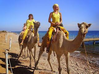 Египет 2013 063
