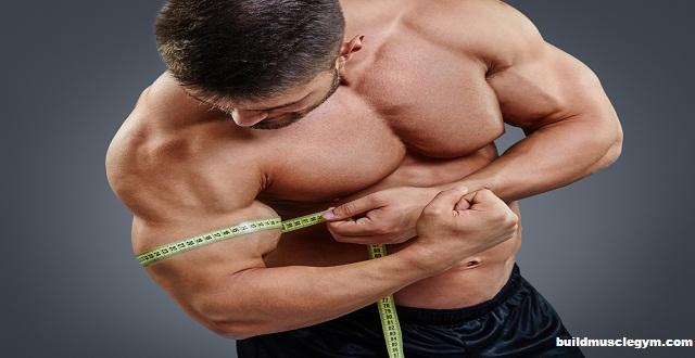 Big Arms How to Grow