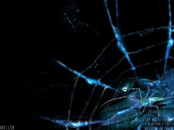 I Dream Spiders, Symbols And Emblems