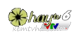 Kênh VTVCab6 HayTV Trực Tuyến
