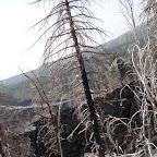 Etna 23-07-2007 (13).JPG