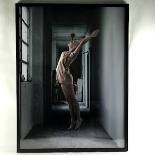 Edson Smitter Enliven Series #3  Photograph
