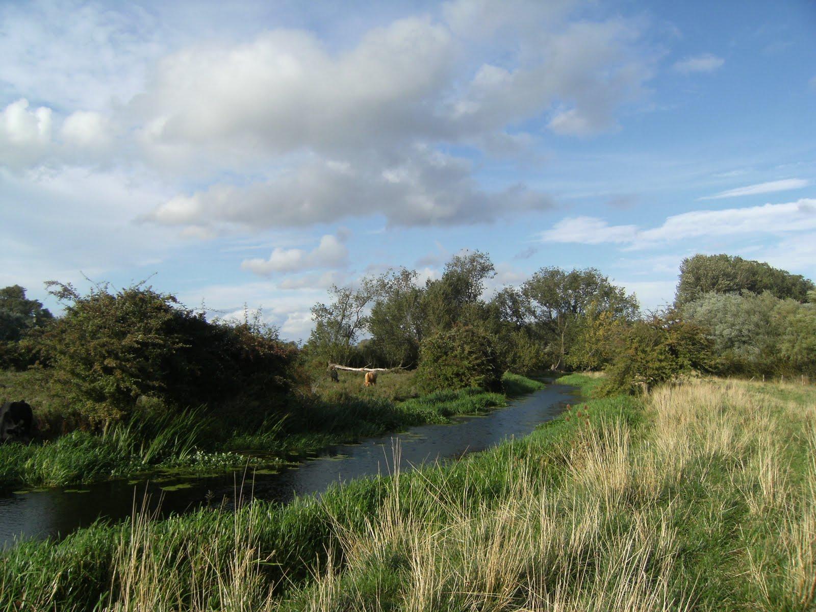 DSCF9480 Between Houghton and Godmanchester