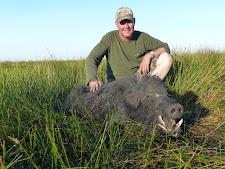 Great wild boar taken by Mr Finch, USA with Australia Wide Safaris