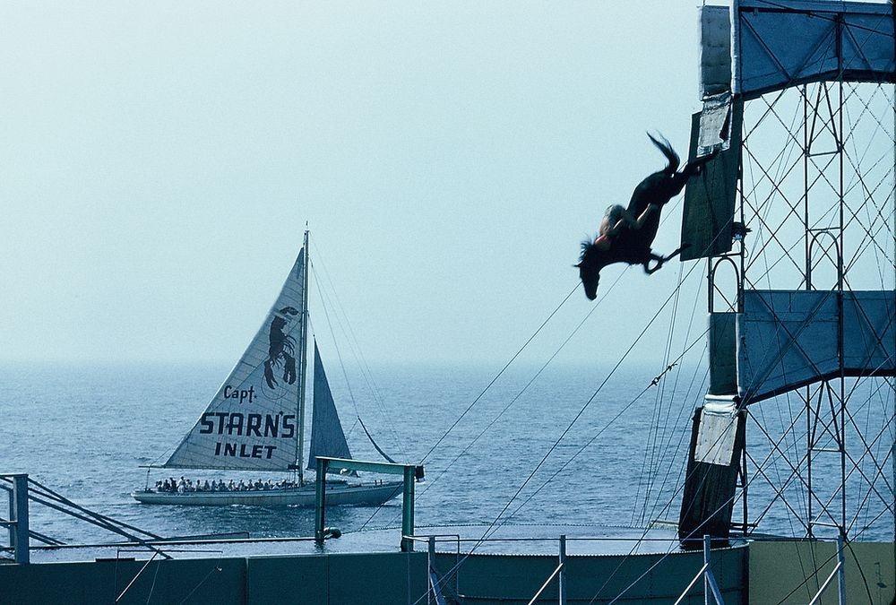diving-horses-11