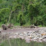 Río Garagoa, Santa María en Boyacá, 820 m (Boyacá, Colombie), 2 novembre 2015. Photo : J.-M. Gayman