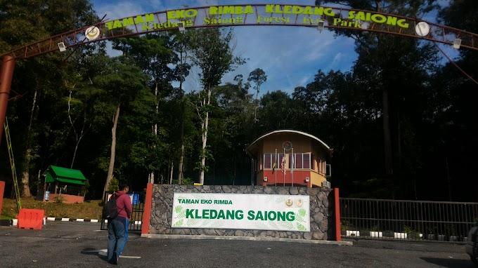 Berkelah di Kledang Saiong