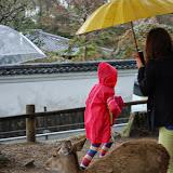 2014 Japan - Dag 8 - jordi-DSC_0437.JPG
