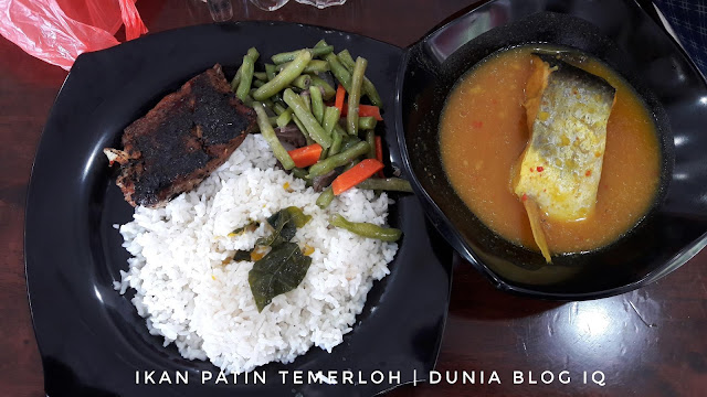 Ikan Patin Masak Tempoyak di Temerloh Catering, Wangsa Maju