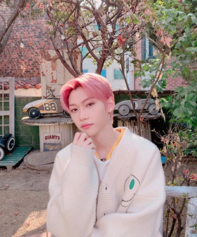 🌸 Kpop Idols With Pink Hair That Resembles Cherry Blossoms 🌸