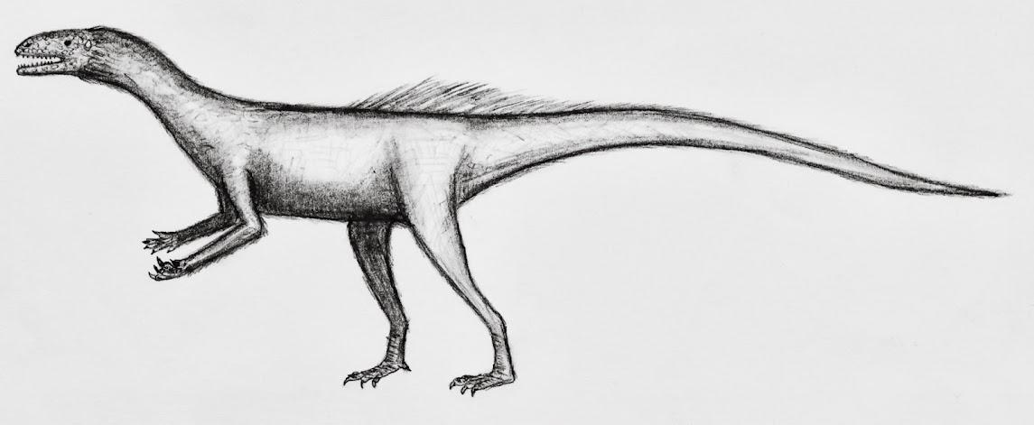 eure dinosaurier-Bilder - Seite 2 Nyasasaurus