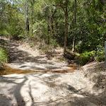 Creek crossing on a trail on the coastal walk in the Wallarah Pennisula (388505)