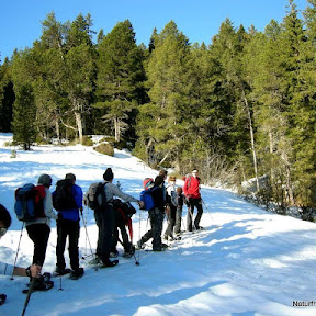 Schneeschuhtour Glaubenberg