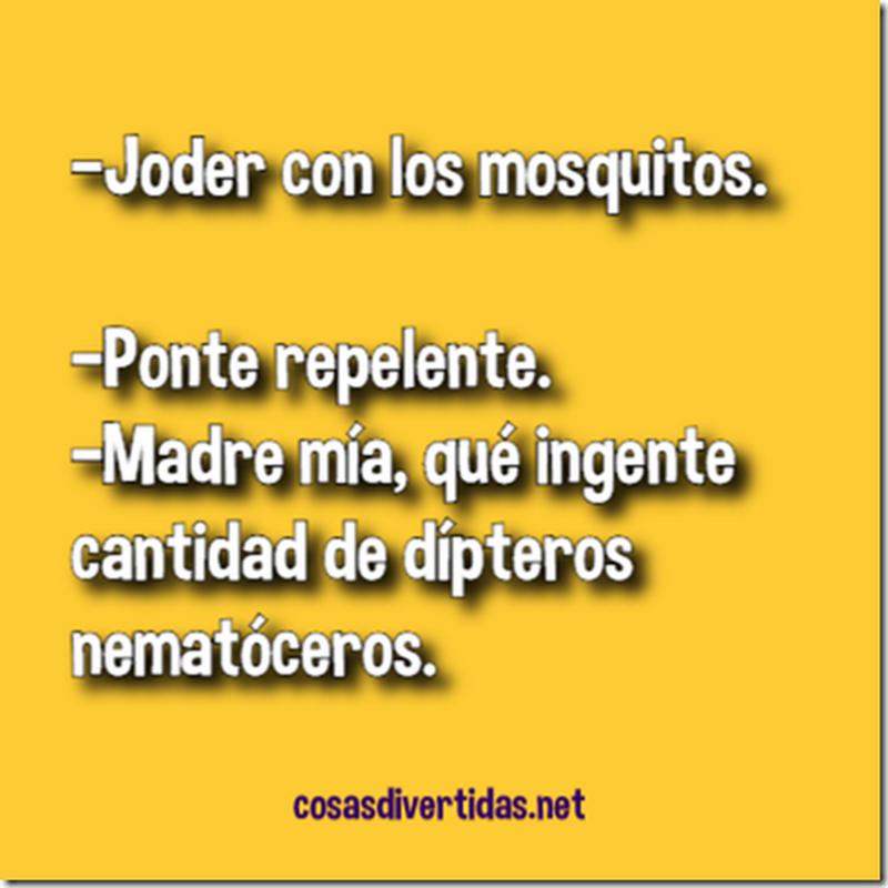 Chistes cortos Repelente para mosquitos