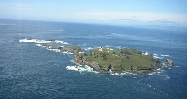 Tatoosh Island, where Prof. Cathy Pfister and her colleagues collected and analyzed mussel shells. California mussel shells collected off the coast of Washington state in the 1970s are, on average, 32 percent thicker than modern specimens, according to a new study published by UChicago biologists.  Photo: Cathy Pfister