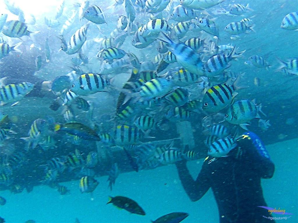 pulau harapan, 6-7 juni 2015 samsung gopro be 15