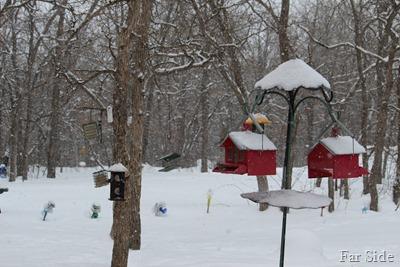 snowing Feb 22