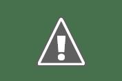 Pemkab Karawang Lakukan Pangkas Pohon di Pinggir Jalan