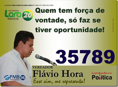 Publicação_Flávio_2