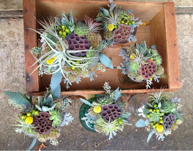 Bohemian Bouquets Scabiosa Pods Lotus Pods Succulents Air