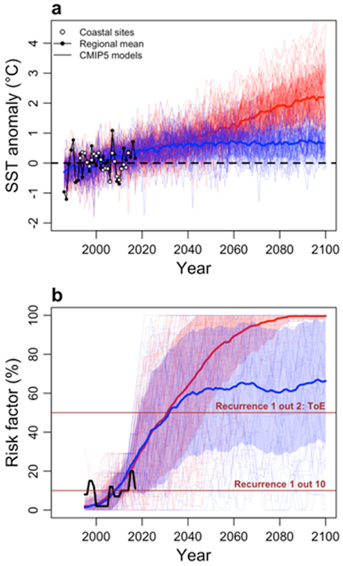 Observed and simulated evolution of winter SST anomaly off the French Atlantic coast and associated risk factor, leading to oyster extreme mortality. Graphic: Thomas, et al., 2018 / Environmental Research Letters