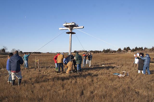 Osprey Platform 1/15/12 - IMG_5135.jpg
