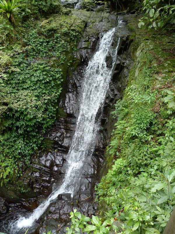 TAIWAN .Jiashi et aux alentours proches - P1000440.JPG